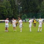 (c) BVB Supporters Vienna
